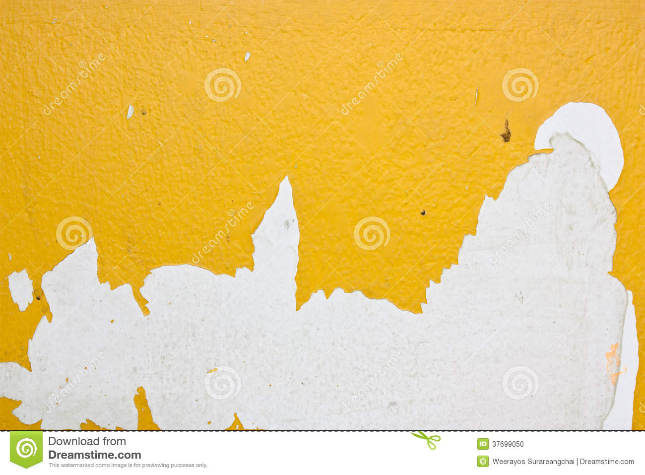 Yellow peel off from the surface of the plaster.