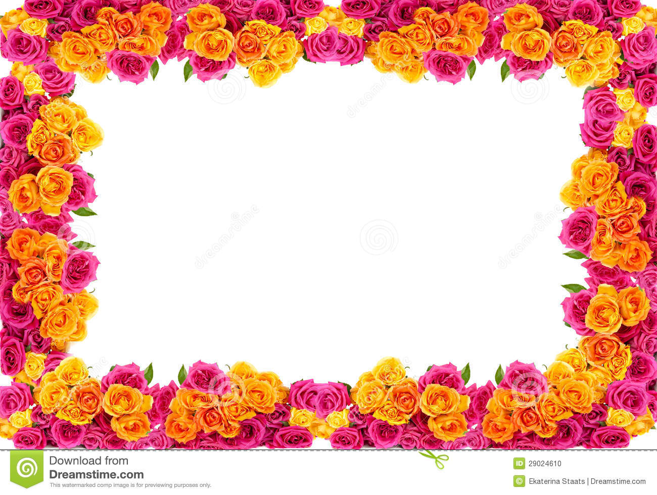 yellow and pink roses frame