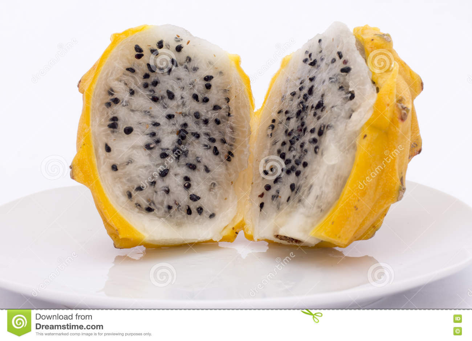 "/""Yellow Dragon/"" Dragon Fruit Yellow Dragon Fruit Selenicereus /'Yellow Dragon/'"