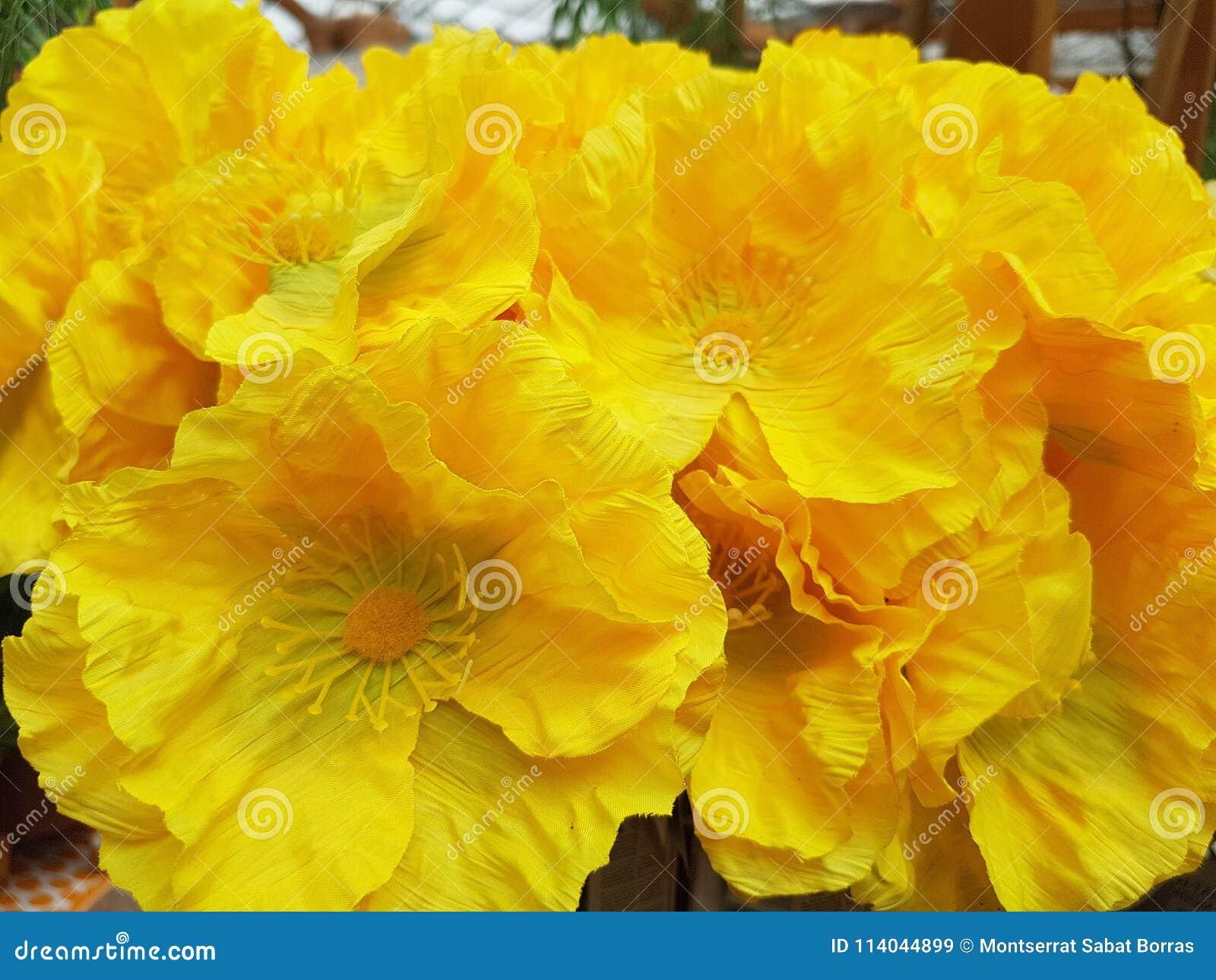 Yellow plastic poppy flowers stock image image of pansy yellow plastic poppy flowers mightylinksfo