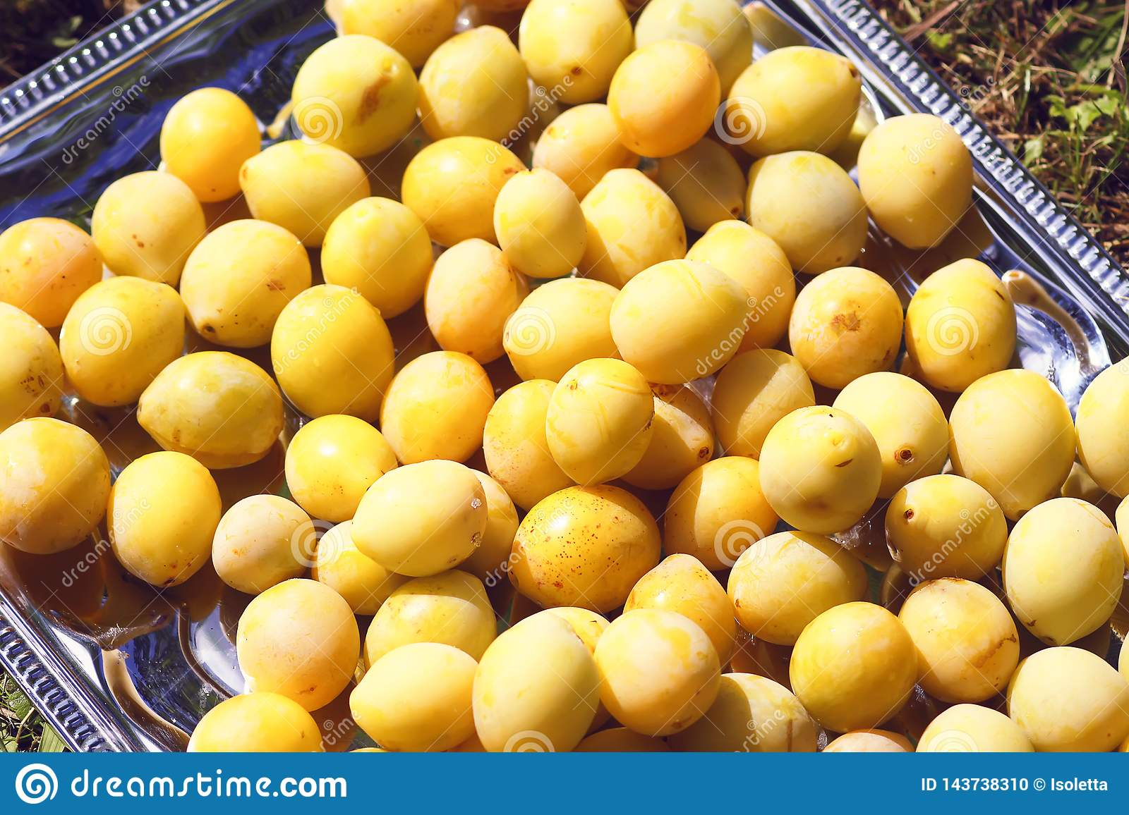 Yellow plums close up. Sweet ripe fruits