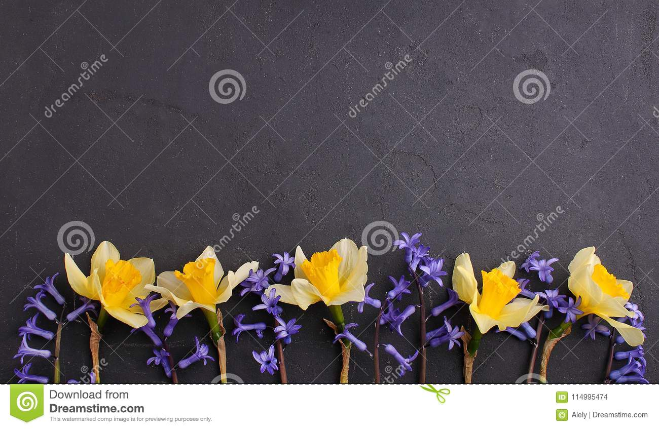 Yellow And Purple Flowers On A Black Background Copy Space Stock