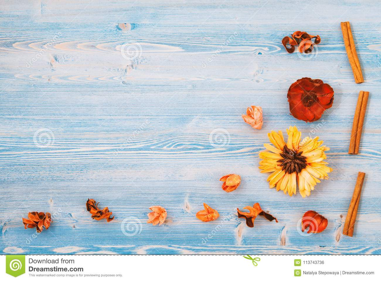 Yellow and red flowers on a blue wooden background. Texture, background. Place for text Top view Concept for a postcard