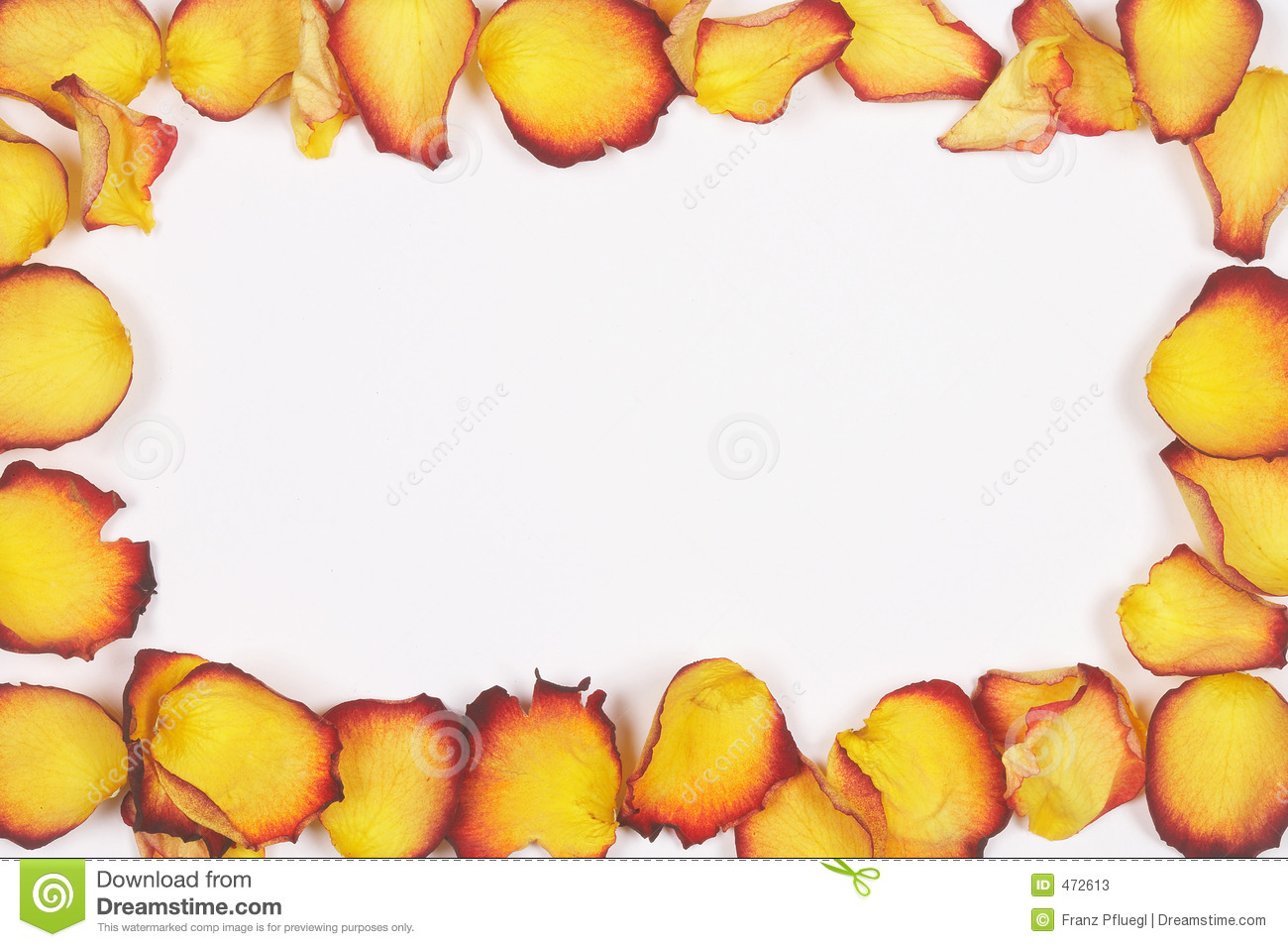 Yellow-red rose petals - gelb-rote Rosenbl䴴er