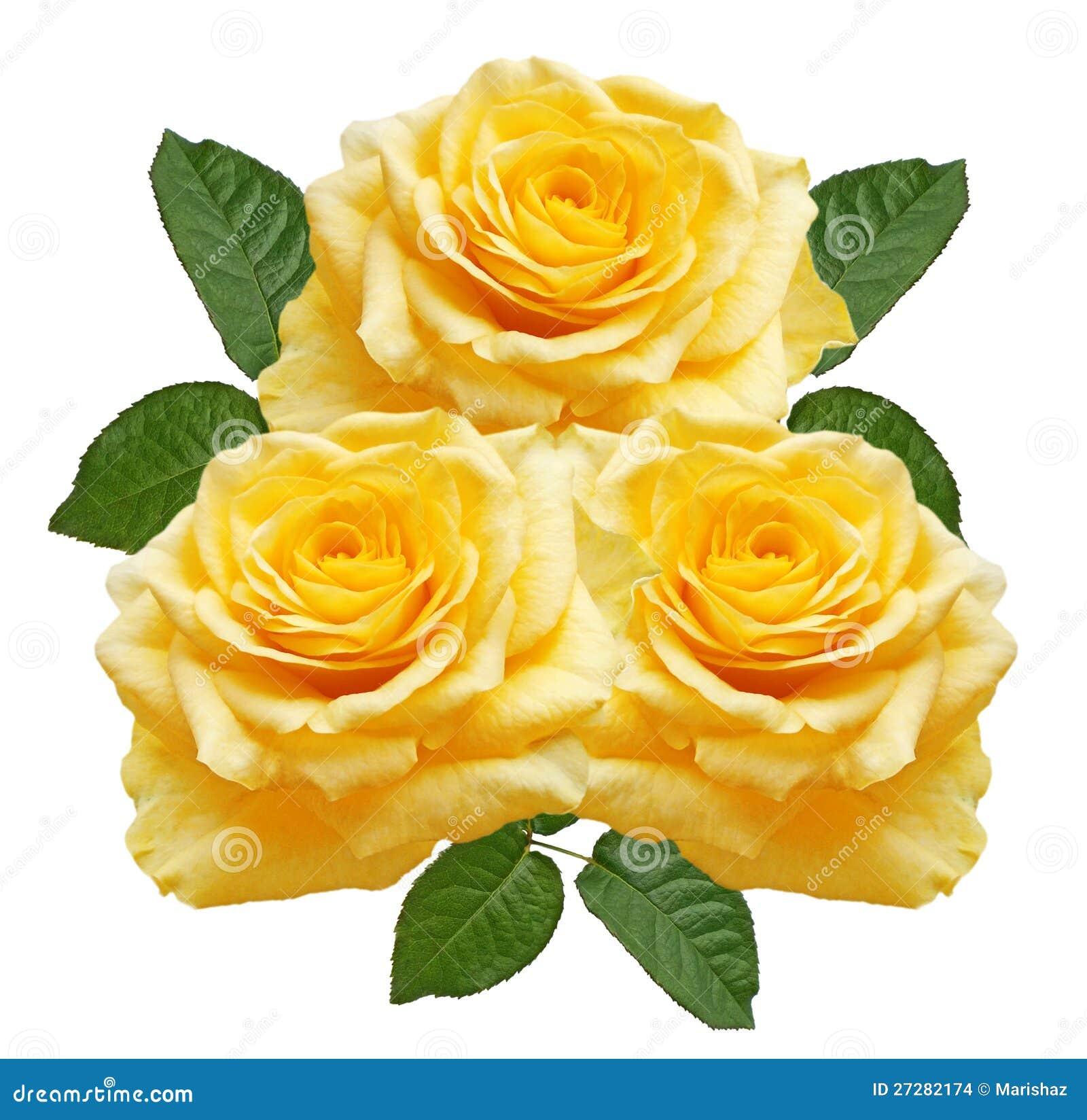 Yellow ro