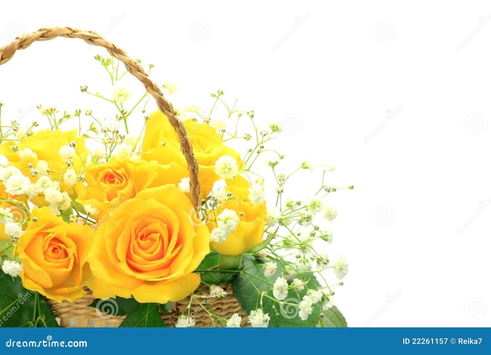 Yellow Rose Stock Image Image Of Father Basket White 22261157