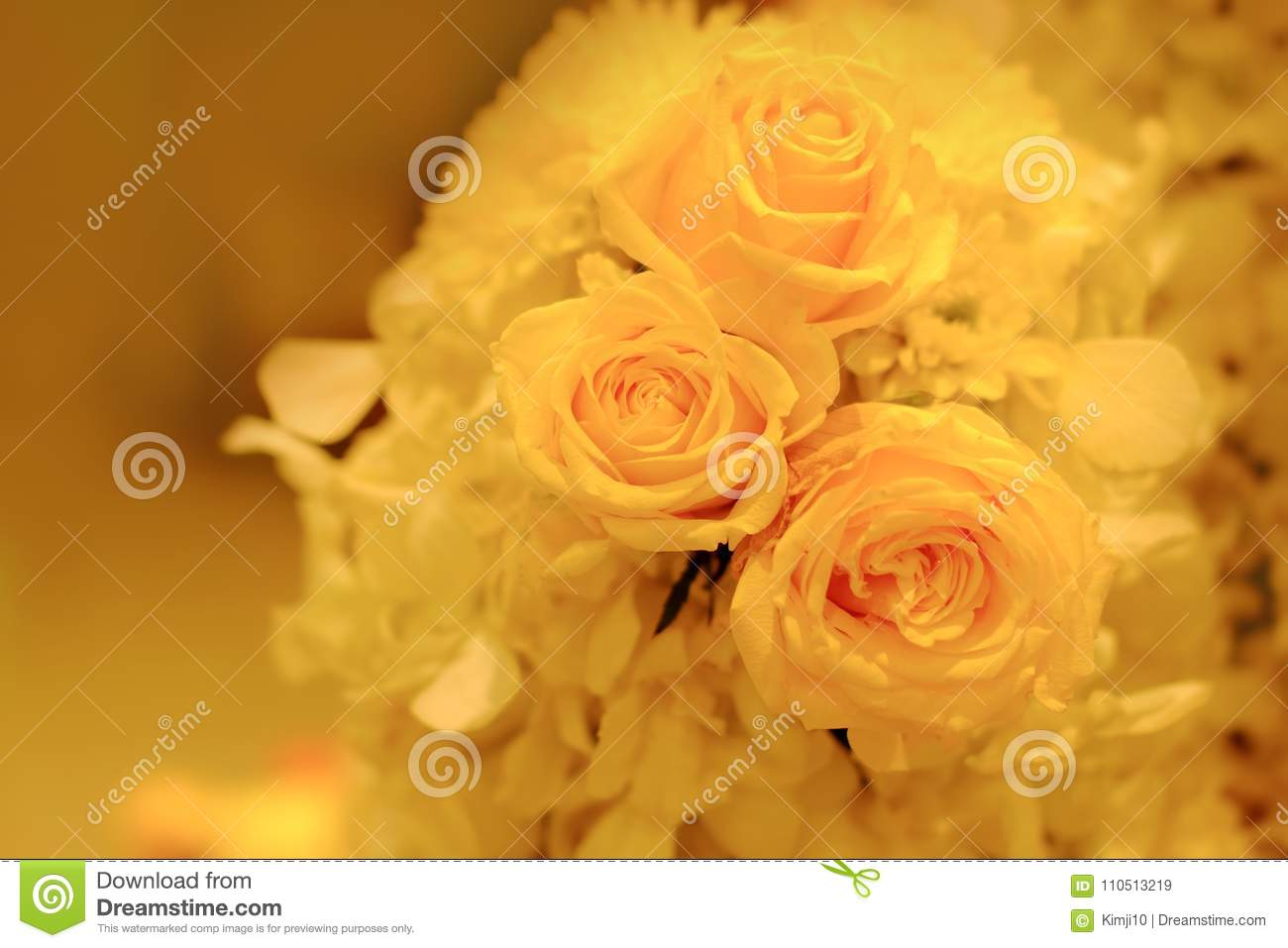 Yellow Roses Hid In Mind Stock Image Image Of Mind 110513219