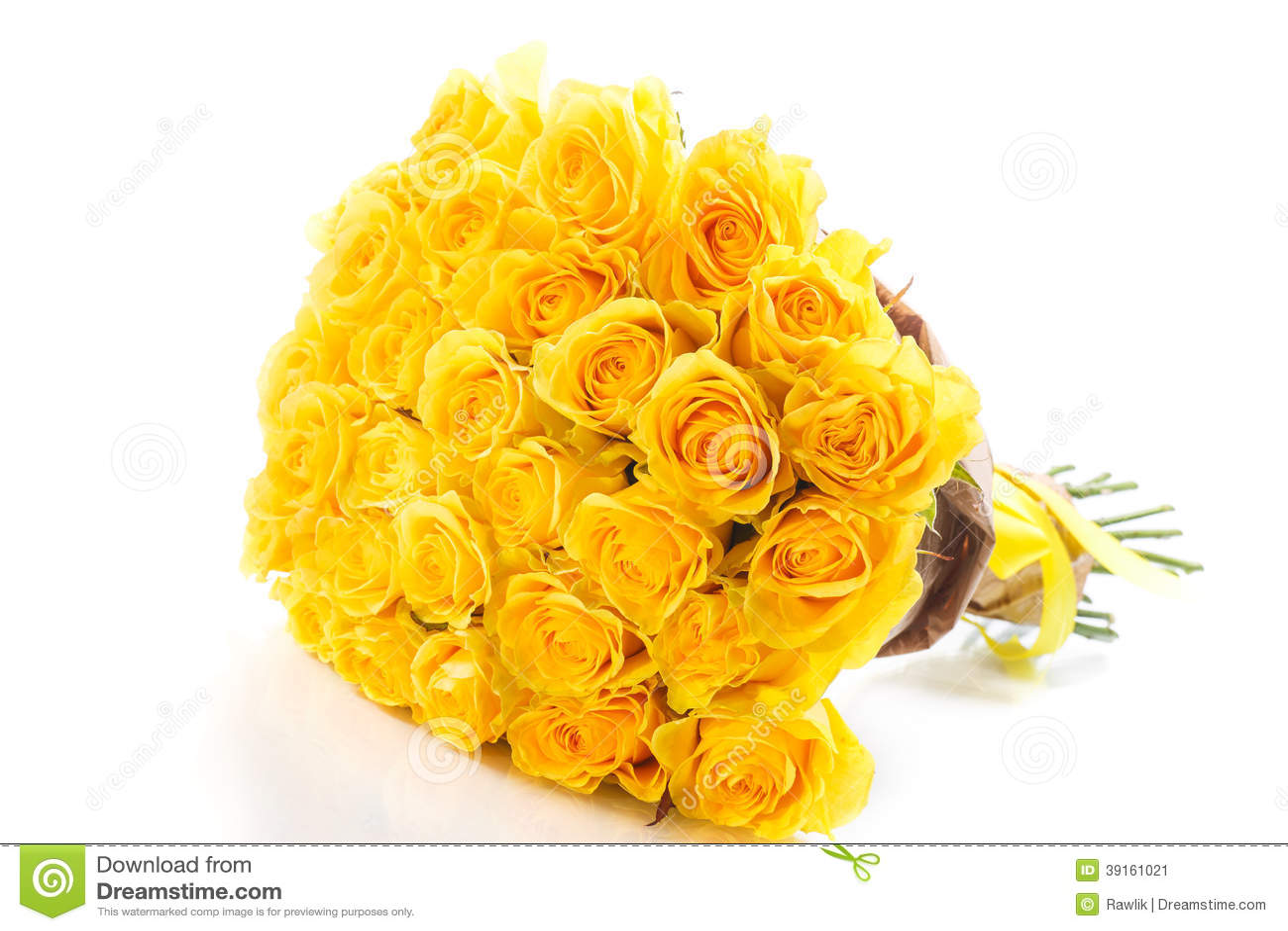 Yellow Roses Isolated On White Background Stock Image Image Of