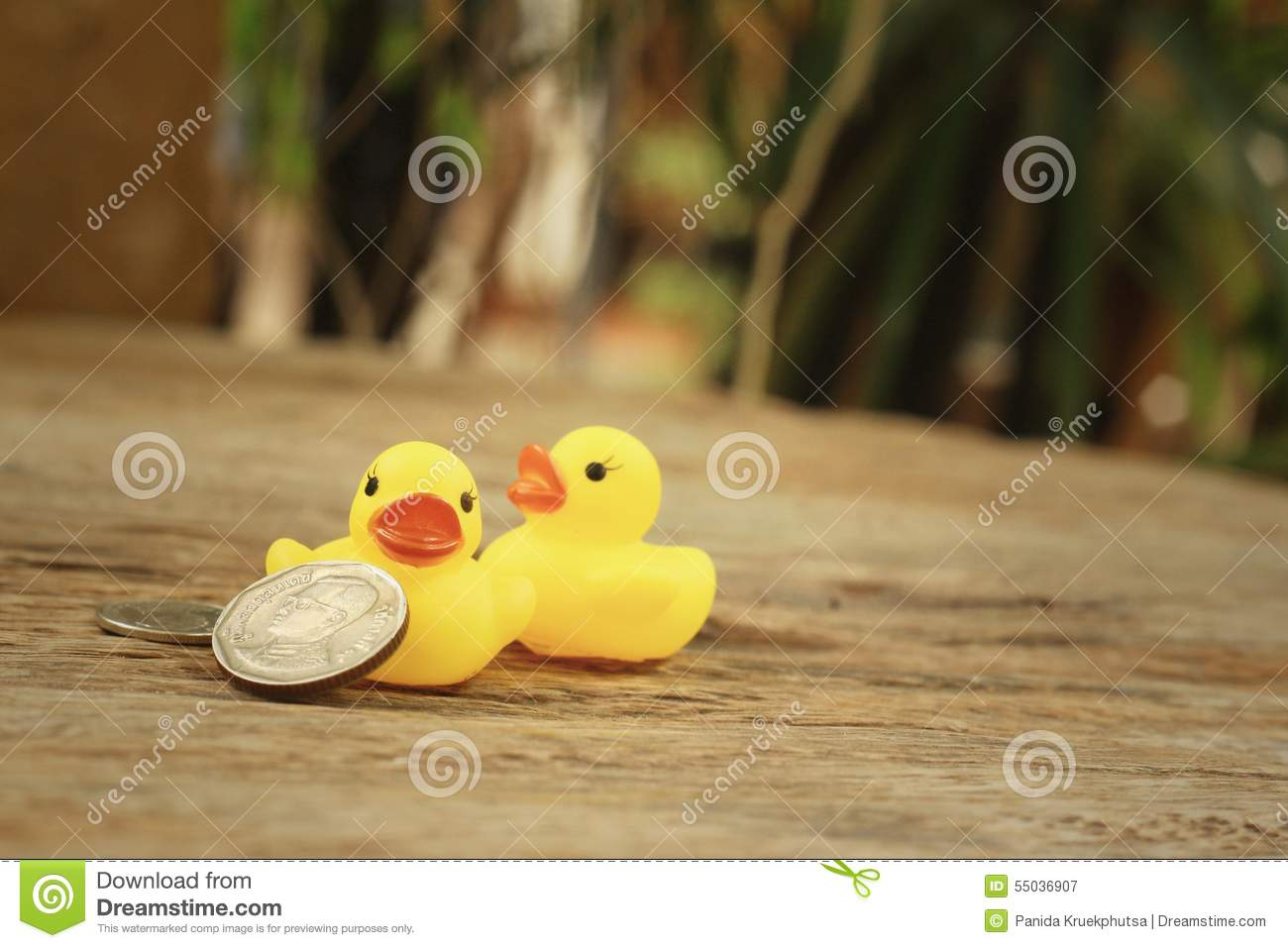 Yellow Rubber Duck With Thai Bath Money. Stock Image - Image of baby ...