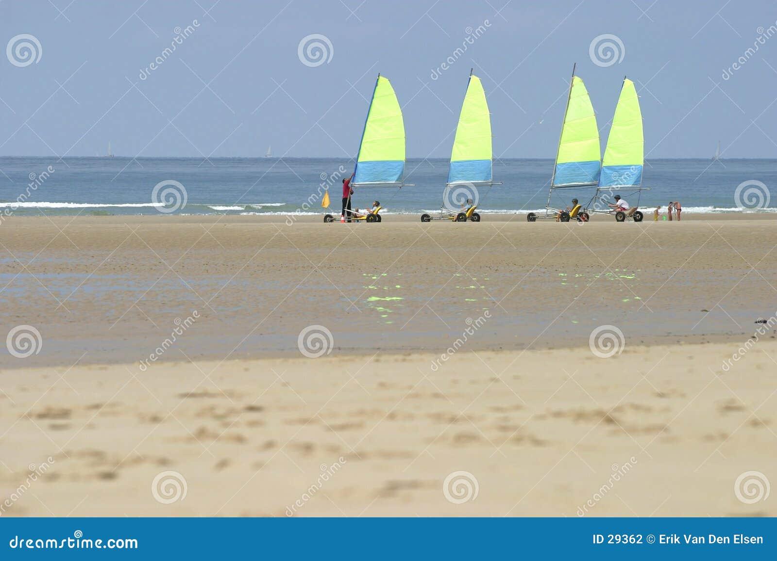 Yellow sails.