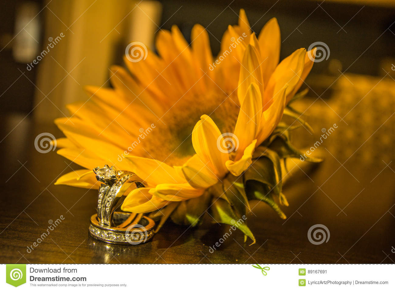 Yellow Sunflower And The Wedding Ring Stock Image Image Of Common