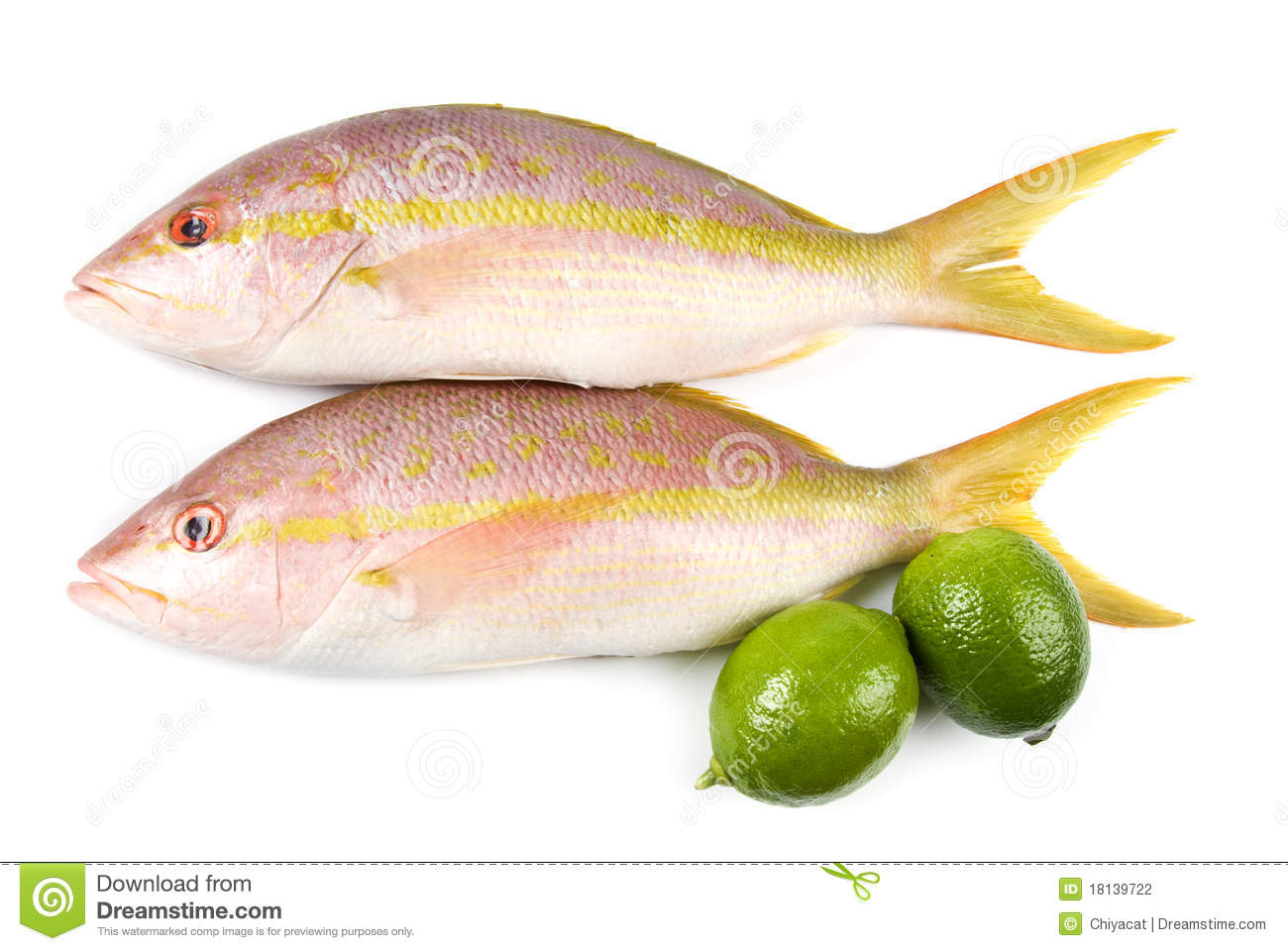 Snappers Yellow 1