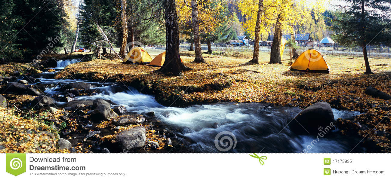 Yellow tent in autumn forest