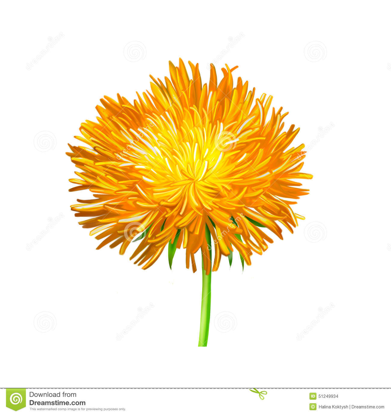Yellow thistle flower aster illustration stock illustration download comp mightylinksfo