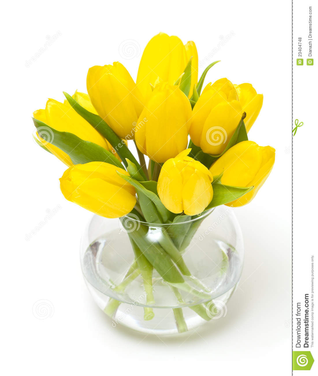 Yellow tulips in a glass vase stock photo image 23404748 royalty free stock photo floridaeventfo Gallery