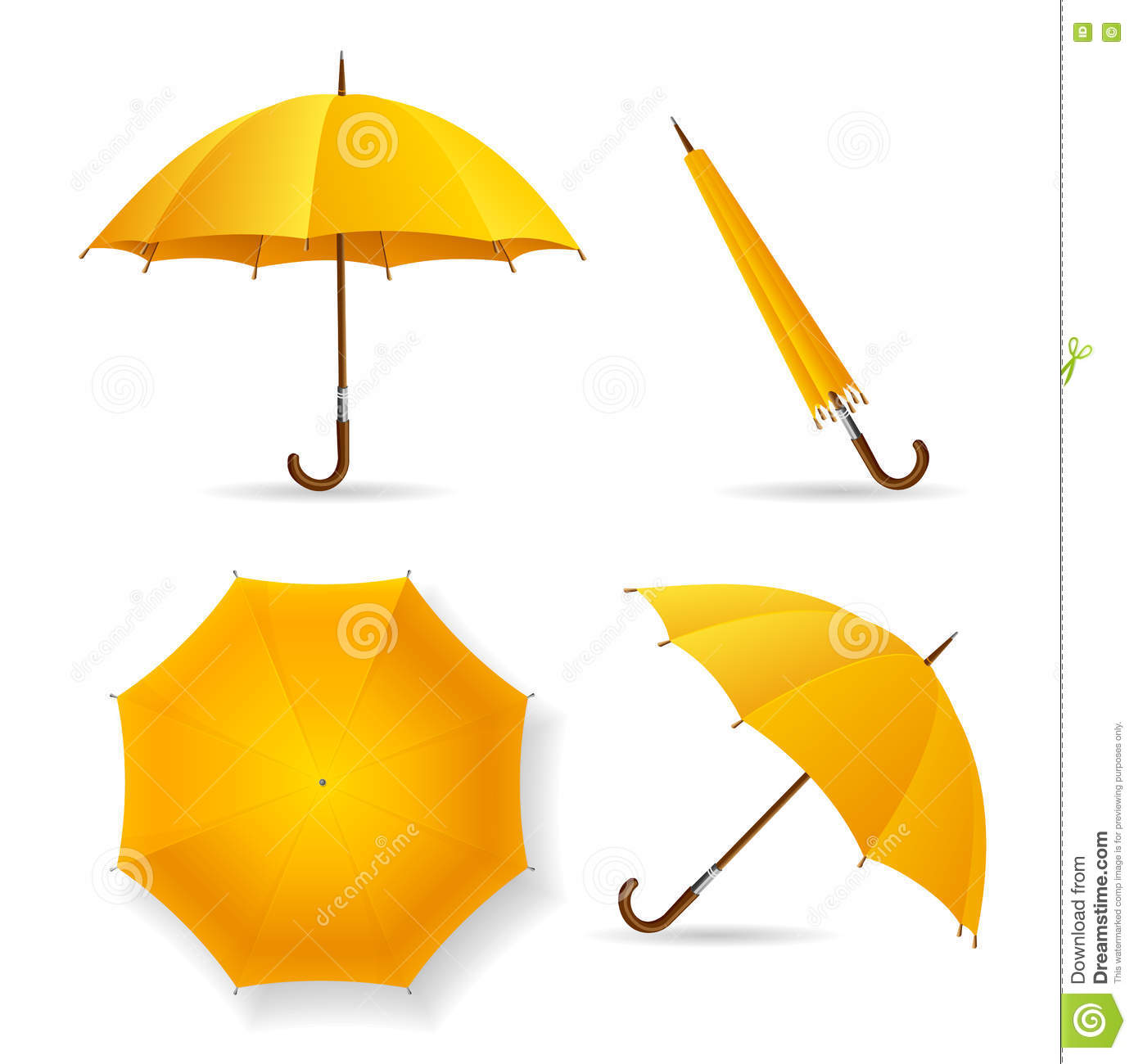 Yellow Umbrella Template Set Vector Stock Vector Illustration Of