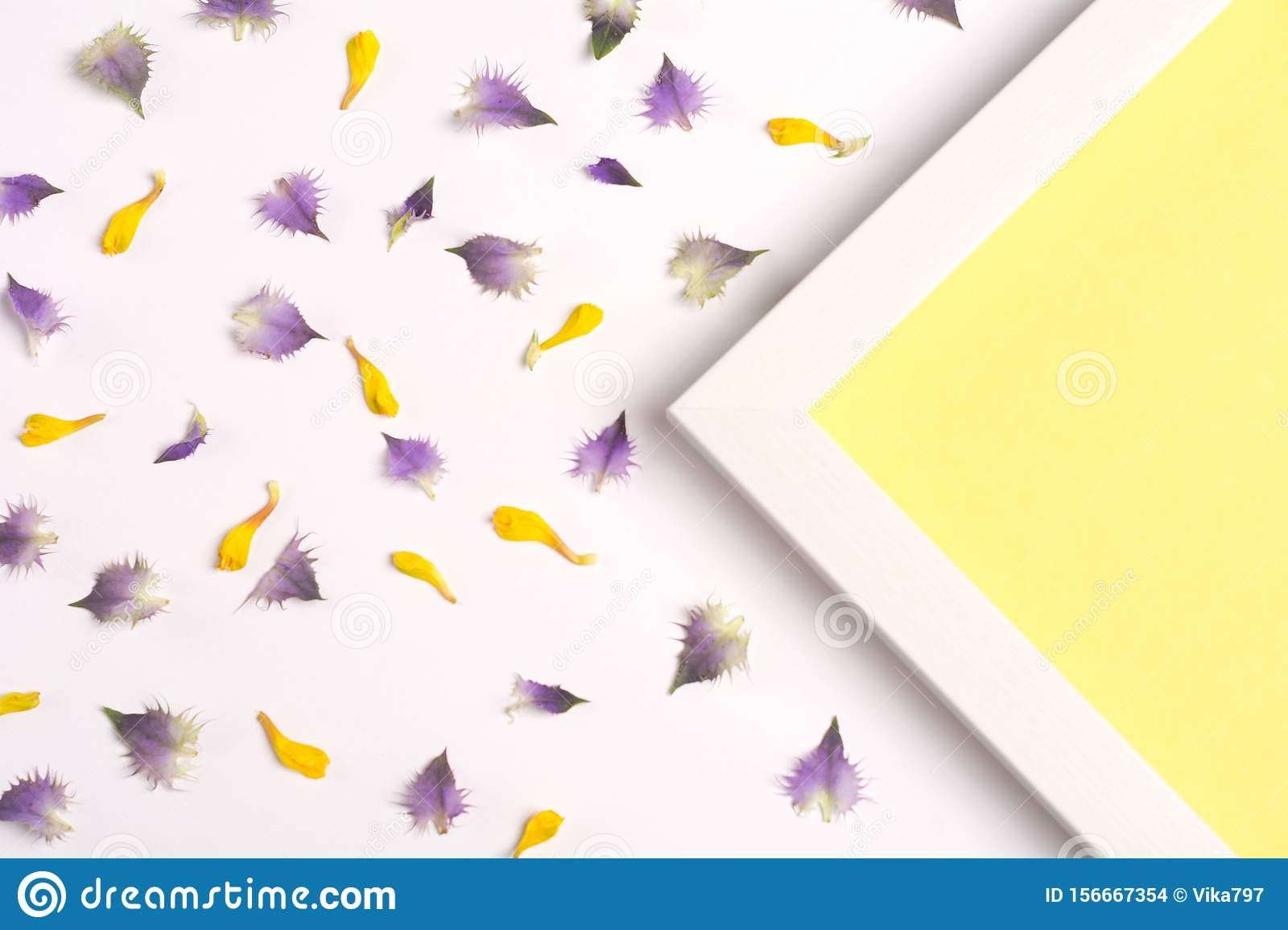 Yellow and violet petals and yellow triangle on a white background.