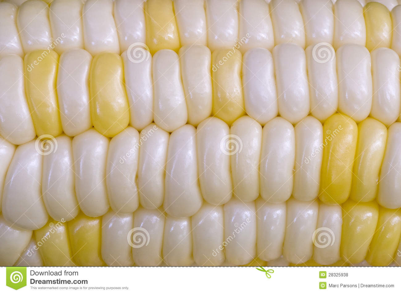 How to Eat Corn on the Cob How to Eat Corn on the Cob new pics