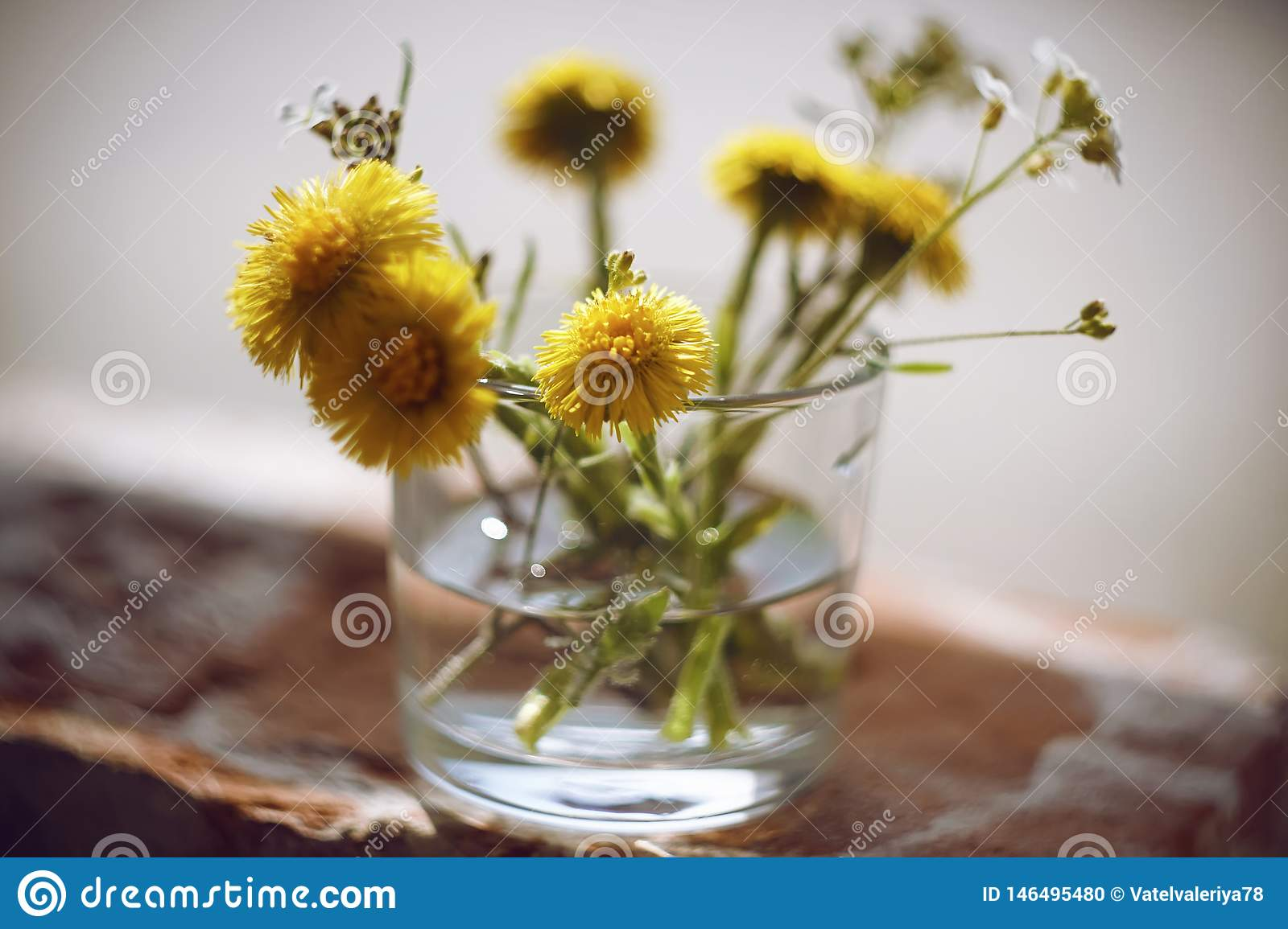 Yellow and white flowers are in a vase with water