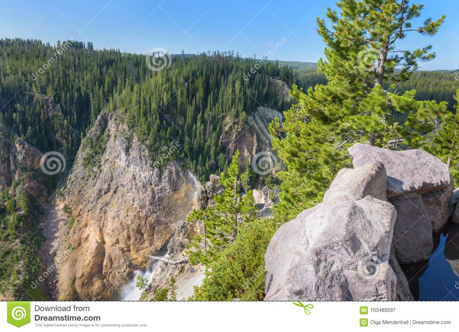 Yellowstone-Gebirgsniedrigere Fall-Wasserfalllandschaft, Wyoming USA