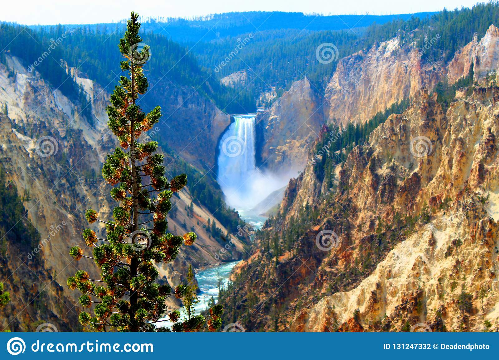 Yellowstone National Park canyon village upper falls of the yellowstone Landscape Mountains and woodlands beautiful cliffs