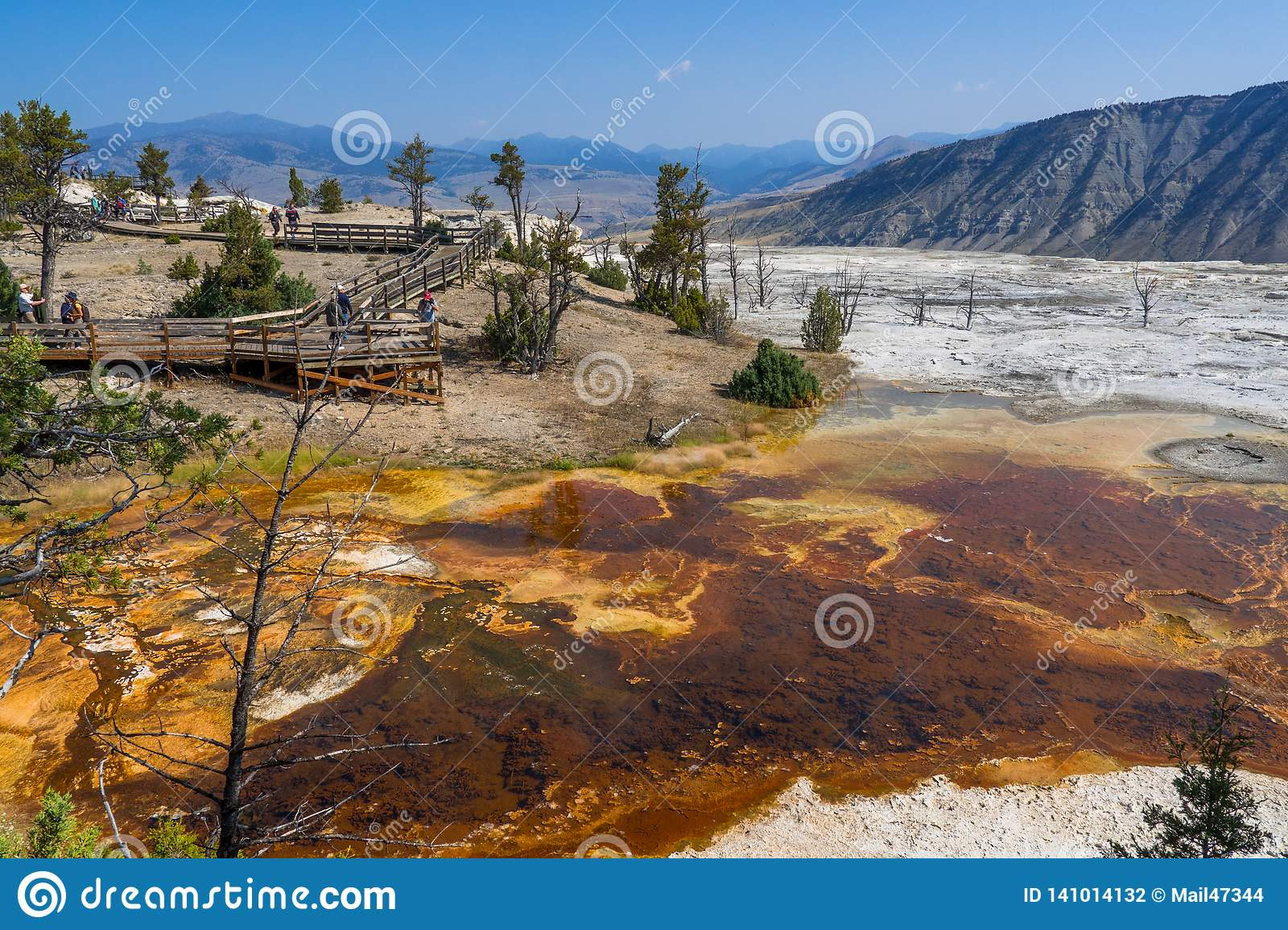 Tourists At Mammoth Hot Springs, Yellowstone Editorial Photography