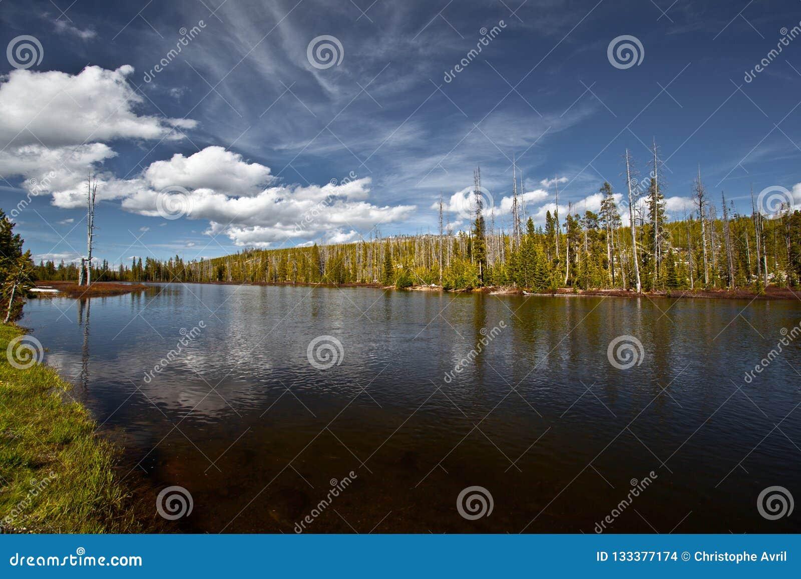 Yellowstone parka narodowego sceneria