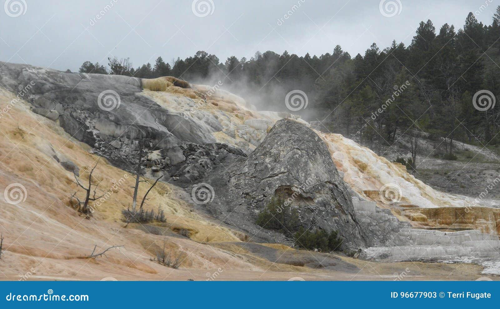 Yellowstone salta salida
