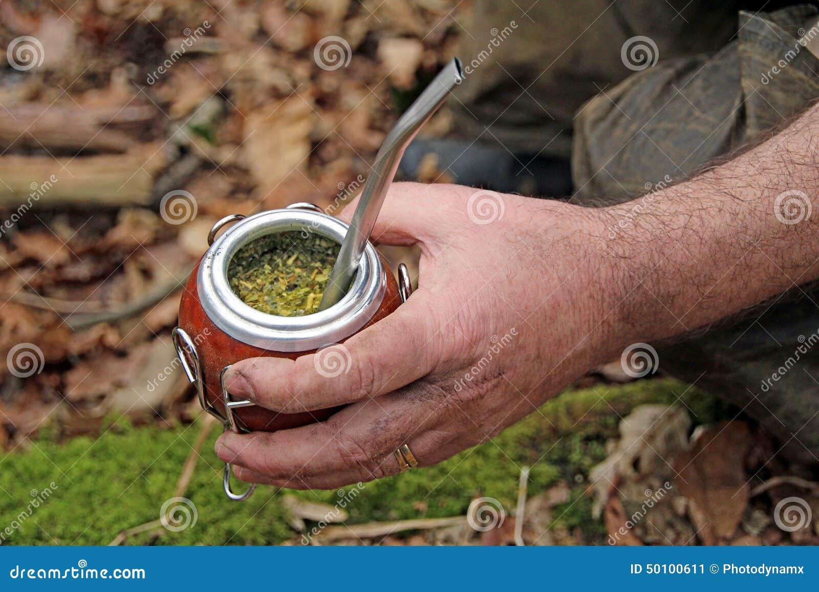 Yerba Mate Gourd And Bombilla Straw Stock Image - Image ...  Yerba Mate Gour...