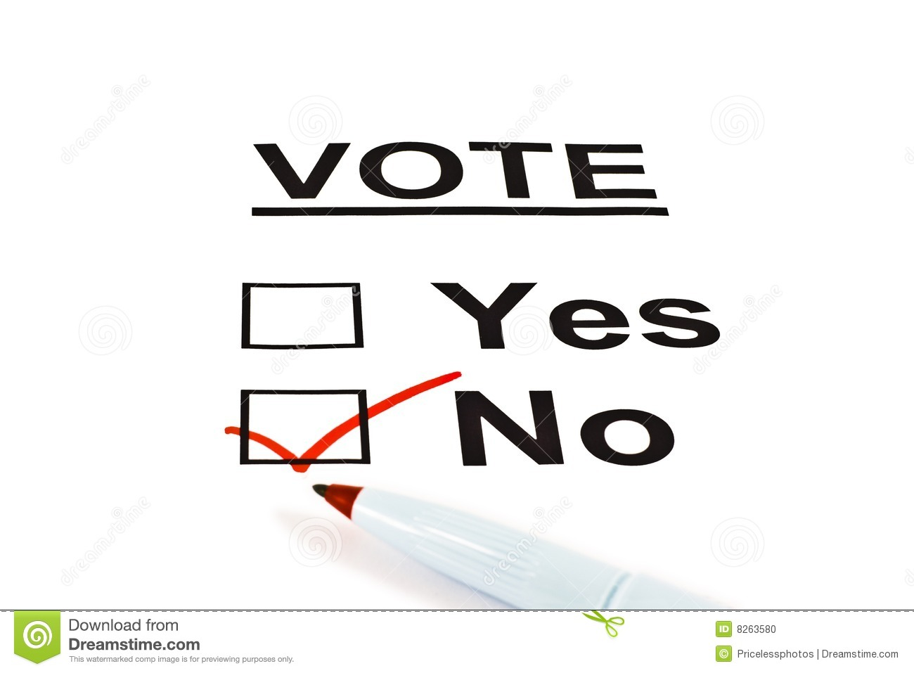 Yes / No Vote Ballot Form With NO Checked
