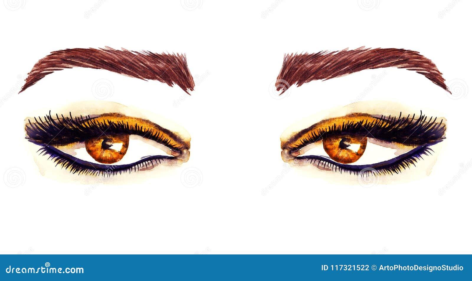 Yeux en forme d amande orientaux de Brown avec le maquillage, fards à paupières bruns d or, contour noir, mascara, sourcils bruns