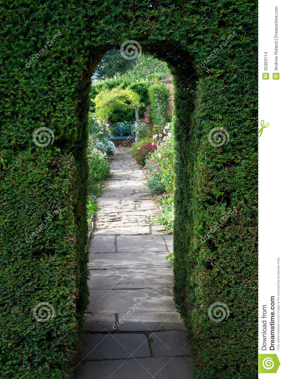 ... clipped yew archway towards a bench with flowers, Cotswolds, England