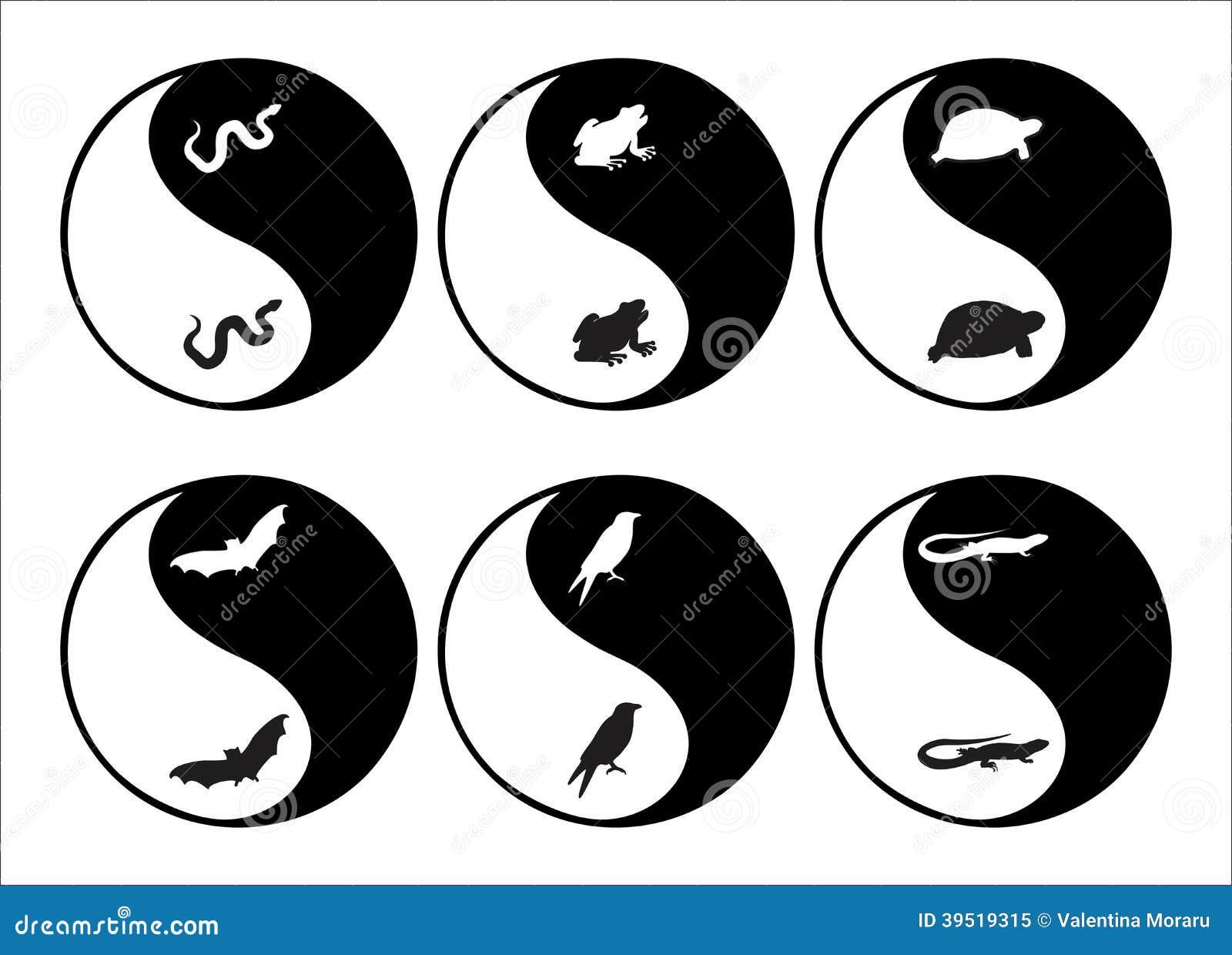 Yin yang stock vector illustration of caution bird 39519315 yin yang biocorpaavc