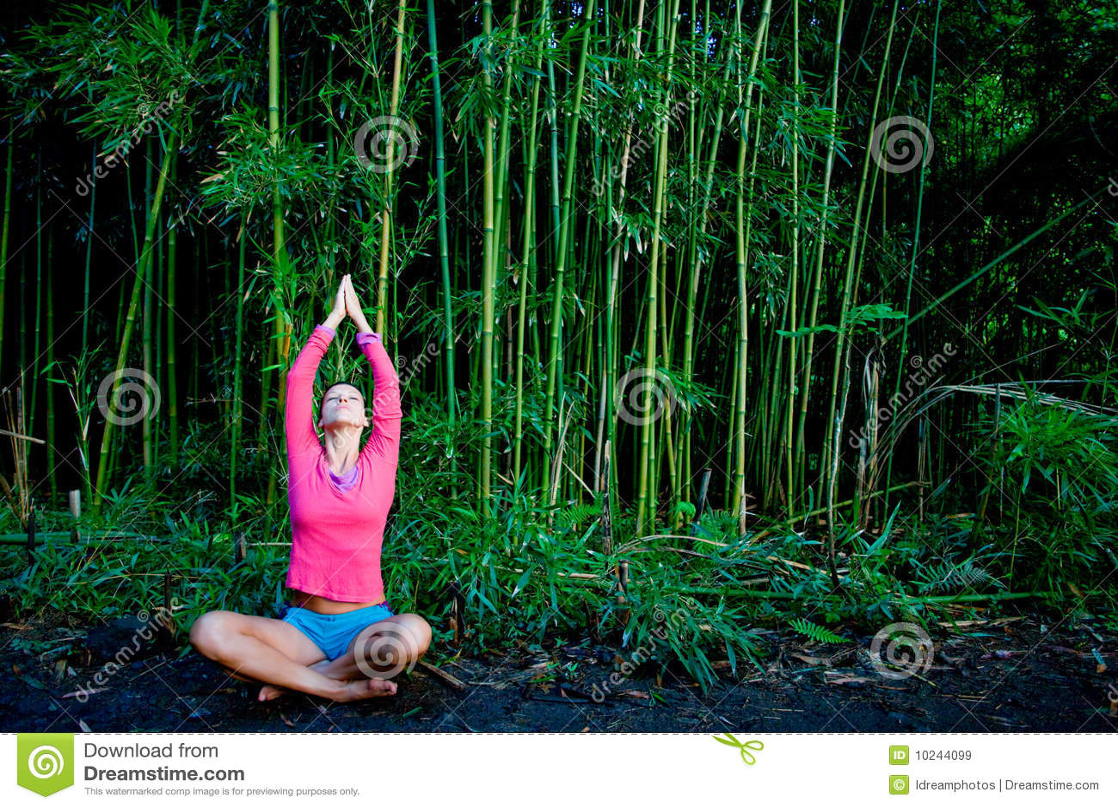 Yoga Bamboo Royalty Free Stock Images - Image: 10244099