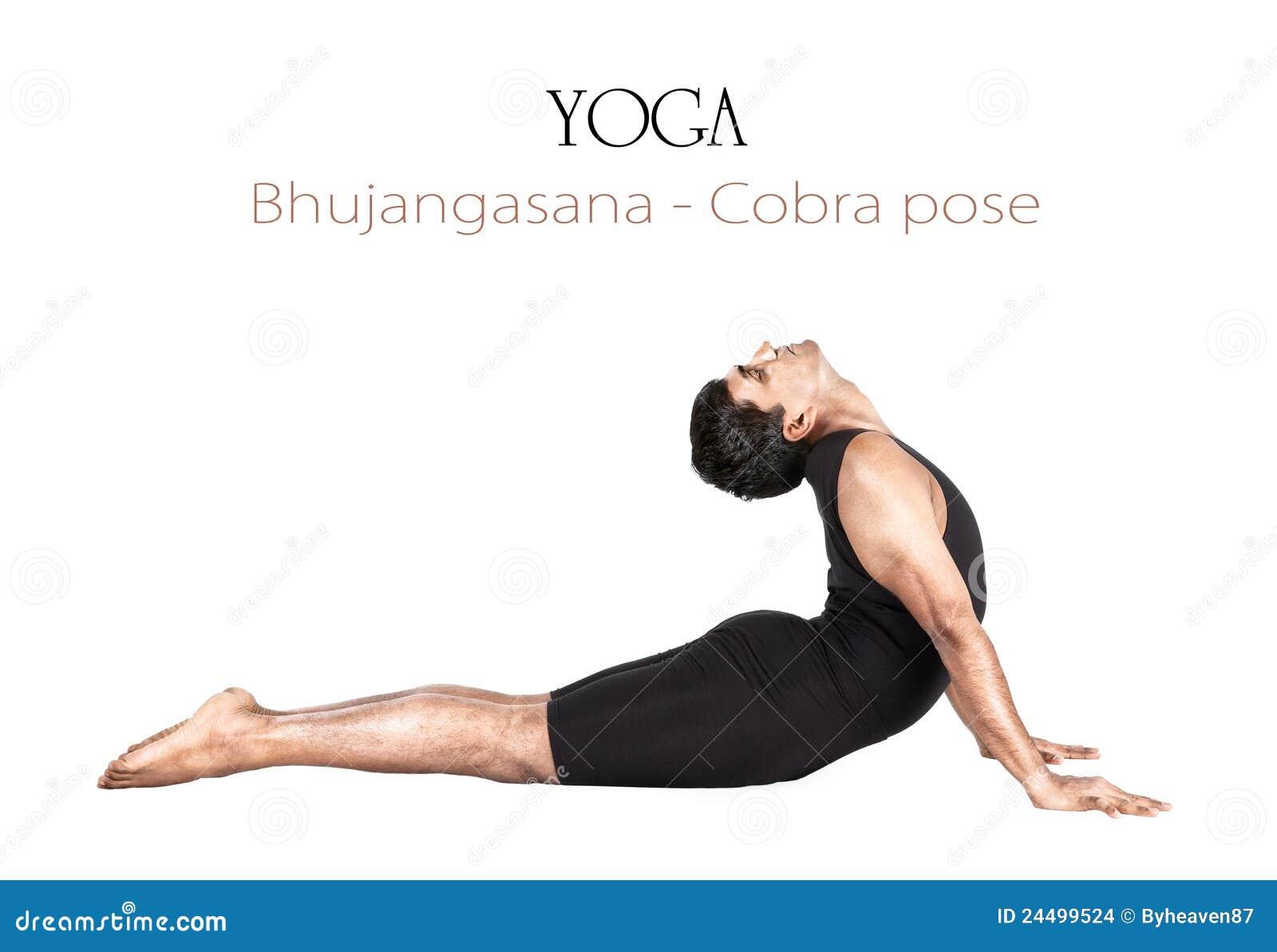 Yoga Meditation Pose Yoga Bhujangasana Cobr...