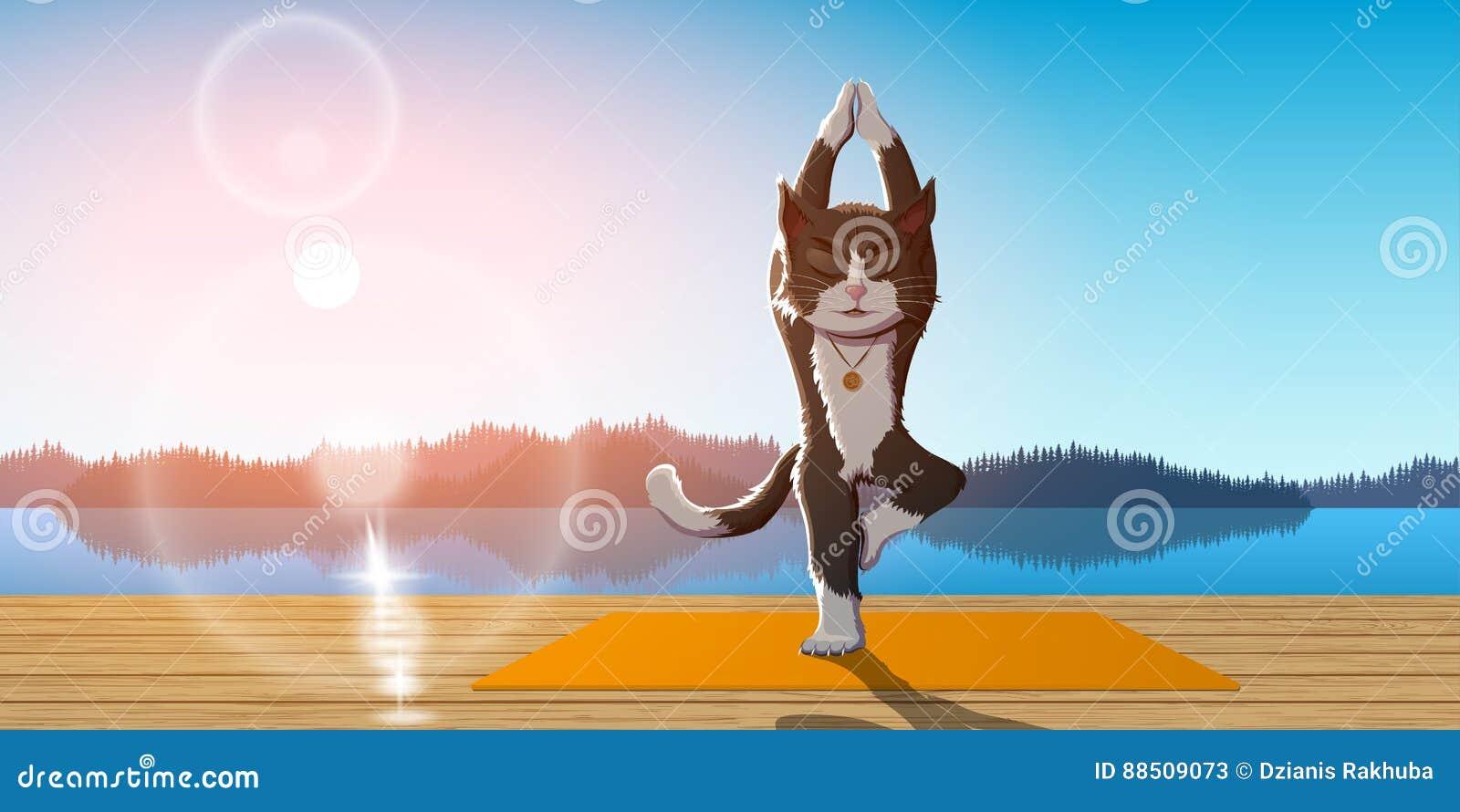 Yoga de pratique en matière de chat
