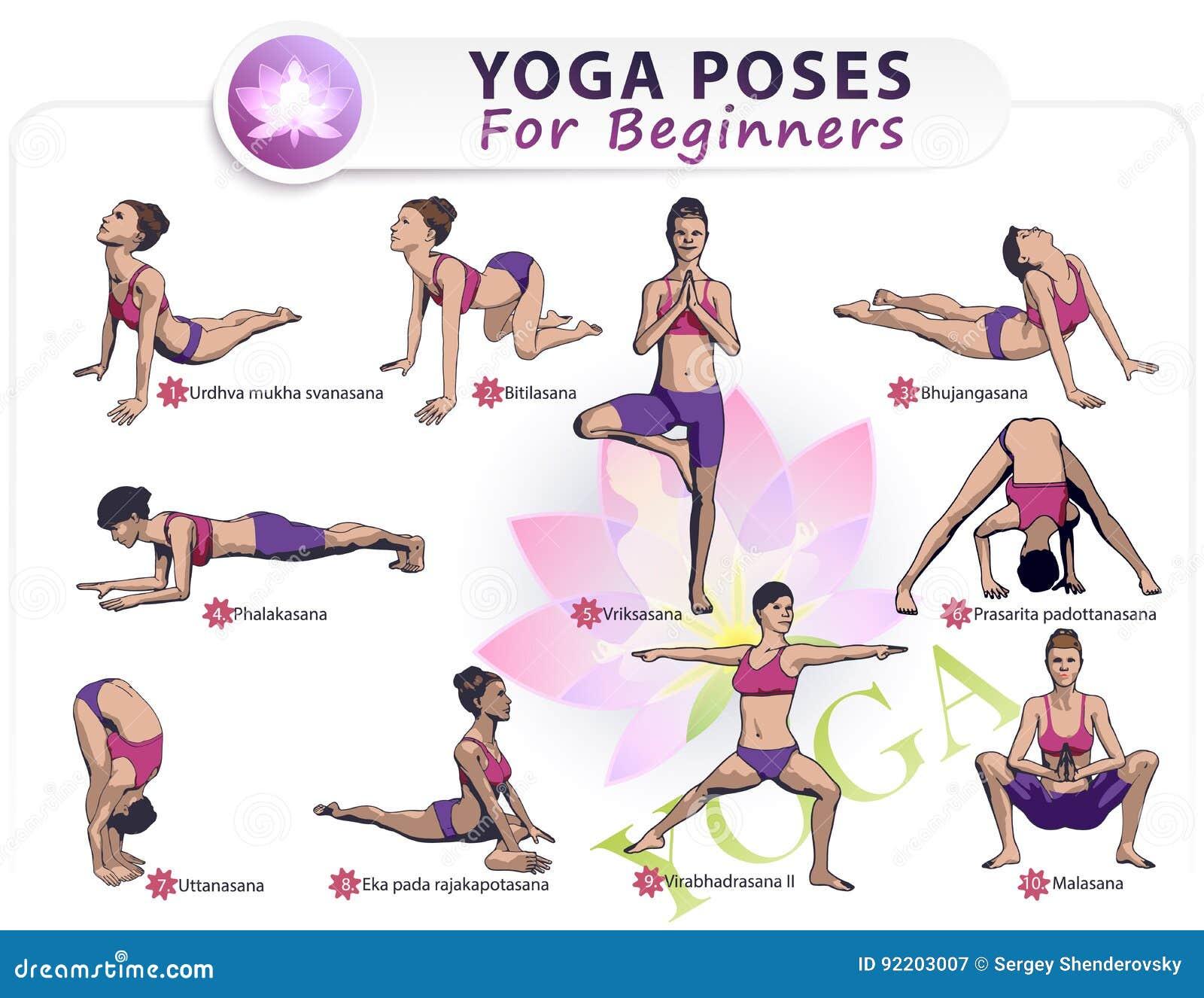 Yoga für Anfänger II vektor abbildung. Illustration von energie ...