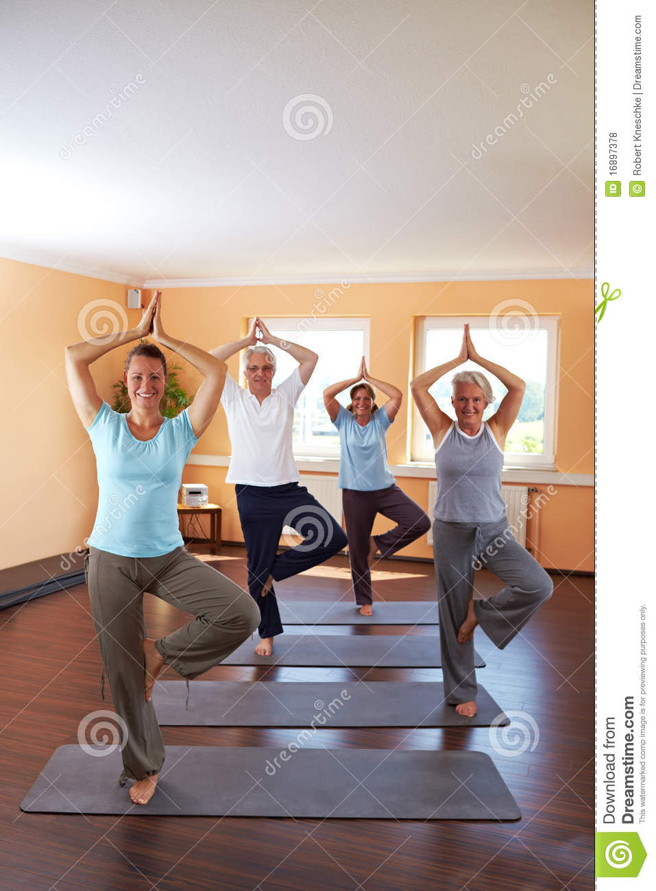 Yoga group doing Vrikshasana