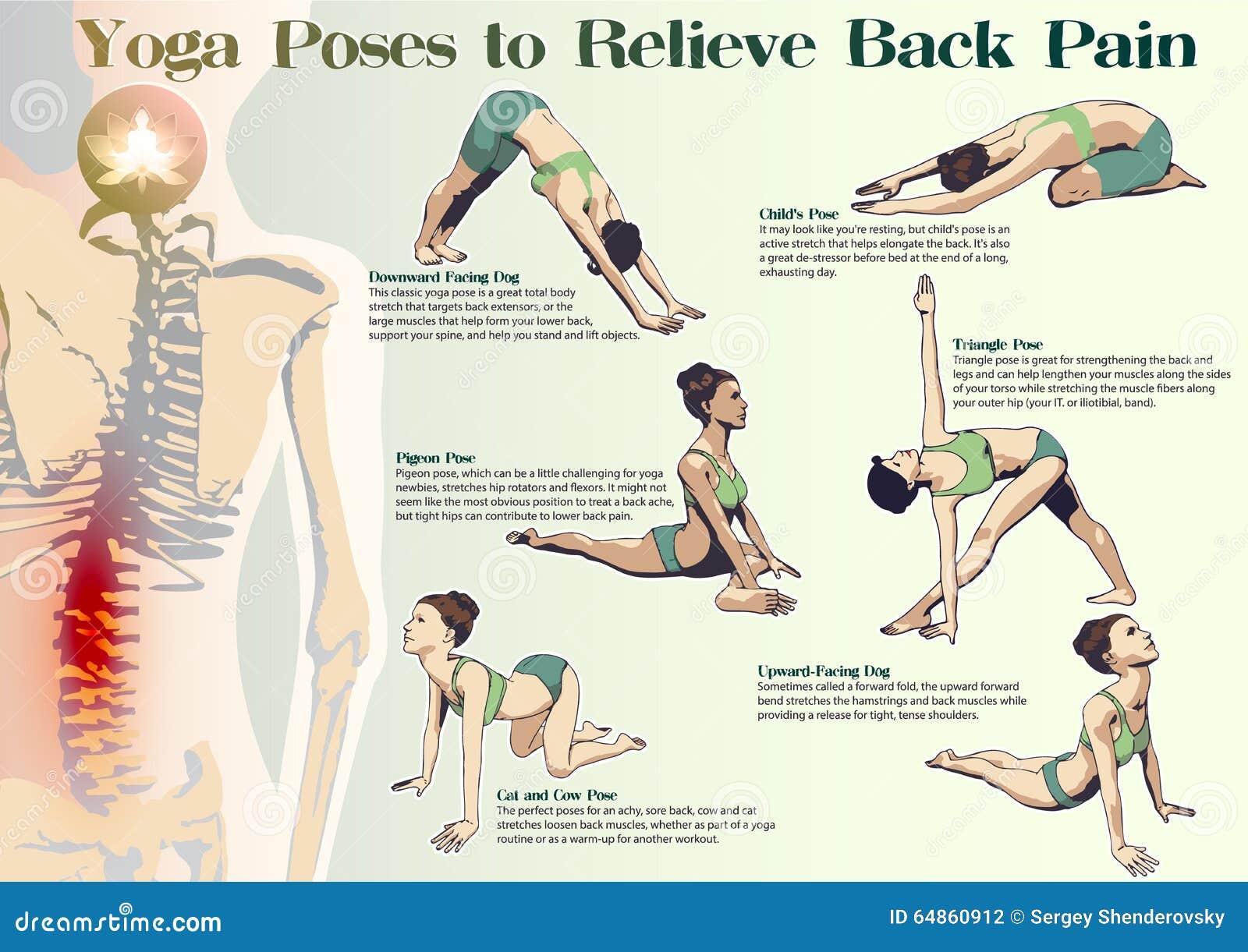 Yoga Haltungen, Zum Von Rückenschmerzen Zu Entlasten Vektor ...