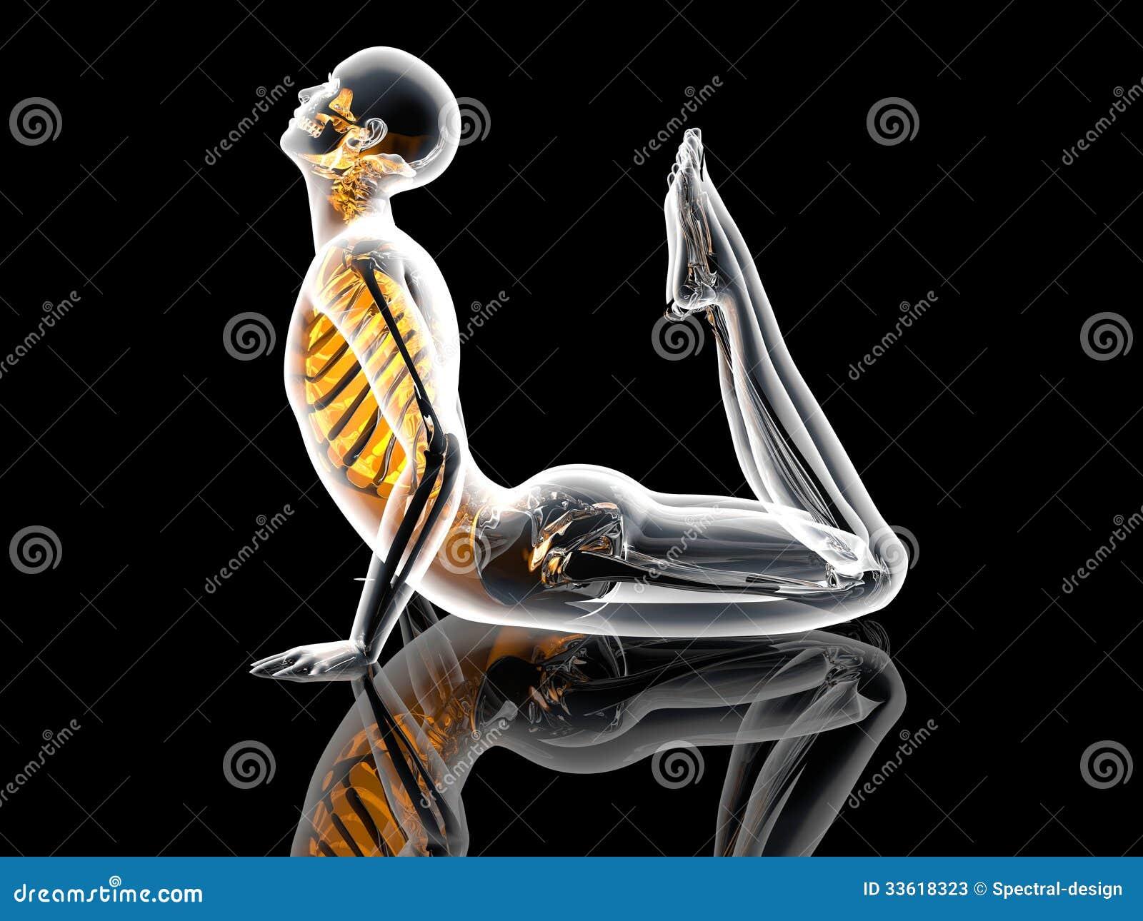 Yoga Pose - King Cobra stock illustration. Illustration of bright ...
