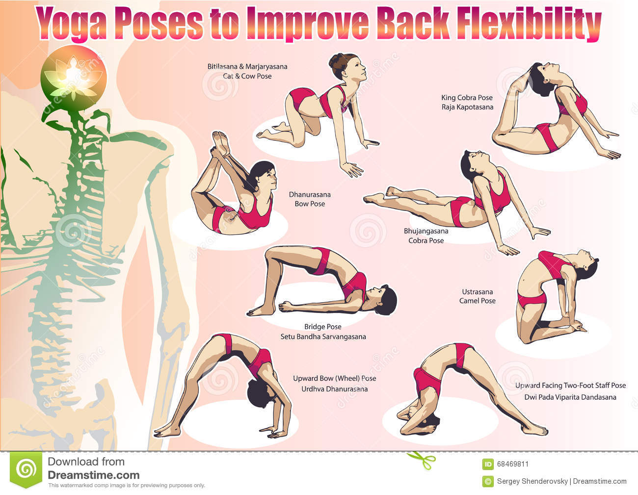Yoga Poses To Improve Back Flexibility Stock Vector