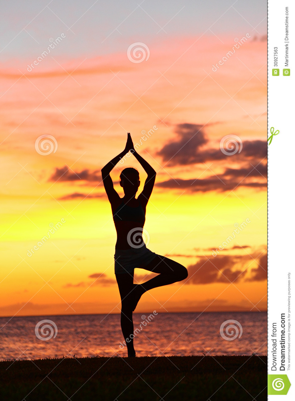 Yoga Woman Training In Sunset Tree Pose
