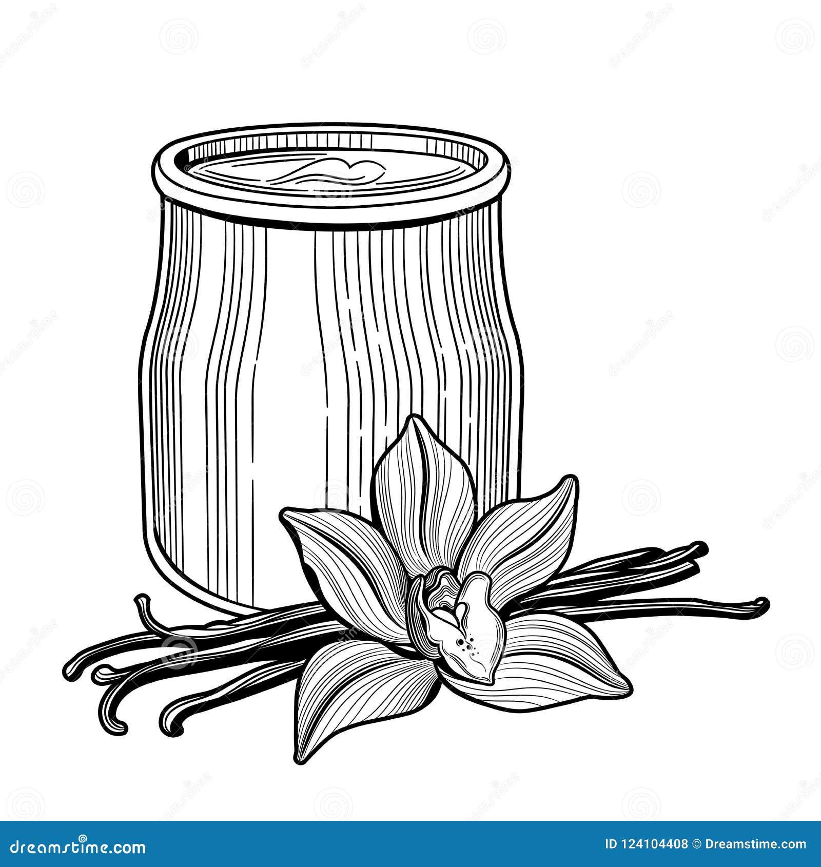 Yogurt in un barattolo di vetro Il fiore di vaniglia Illustrazione deliziosa sana e naturale di vettore della prima colazione