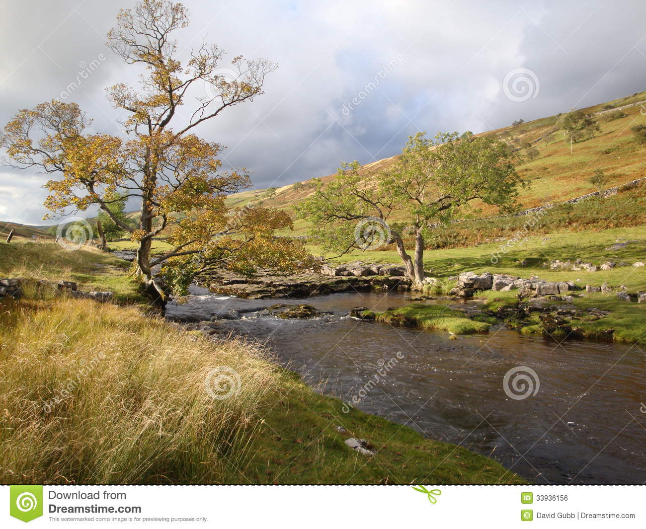 Yorkshire Dales National Park stream