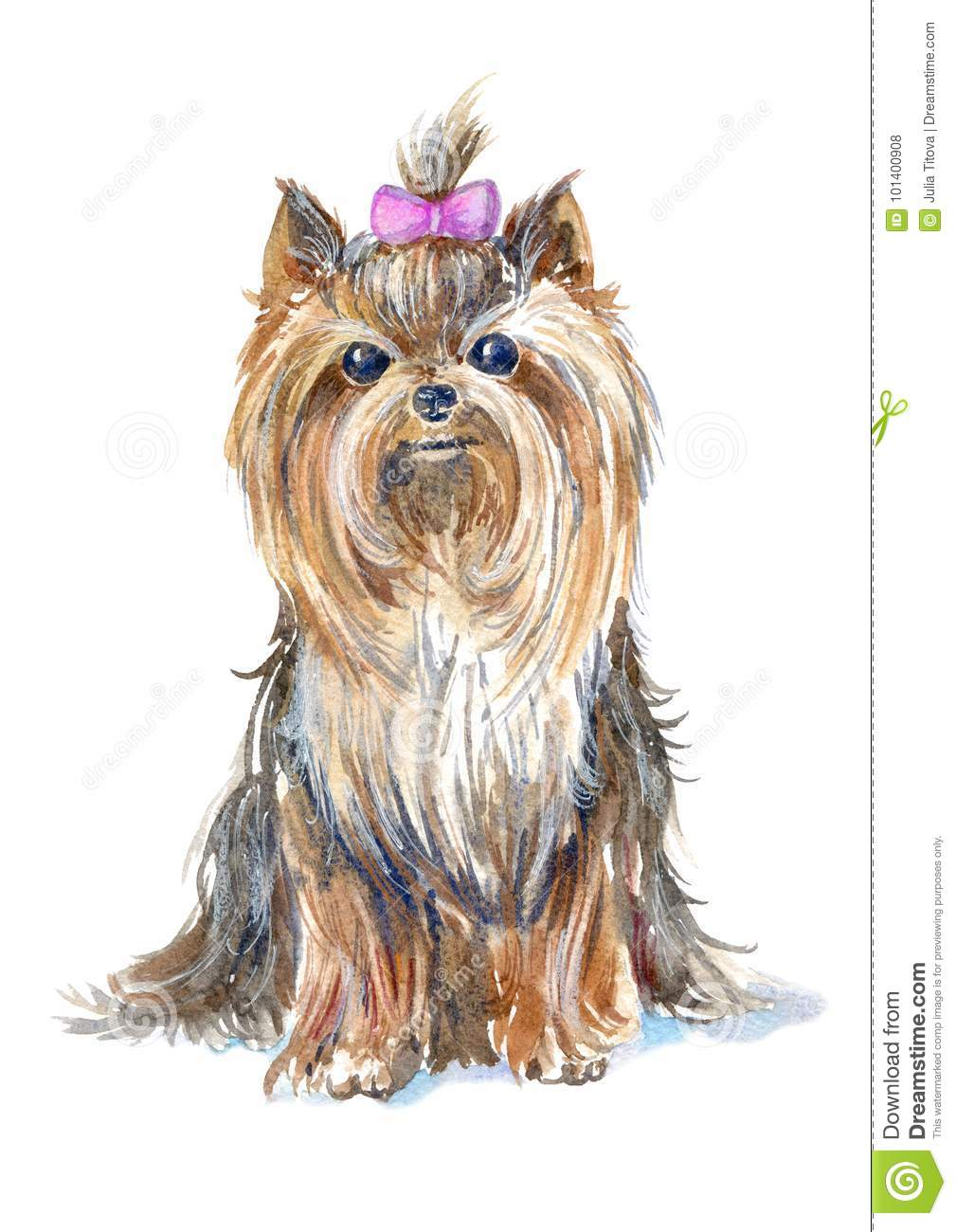 Yorkshire Terrier Portrait Greeting Card Of A Dog Stock