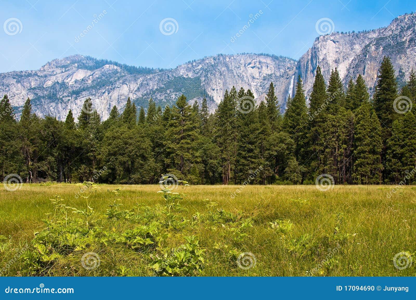 Yosemite Falls über Tal