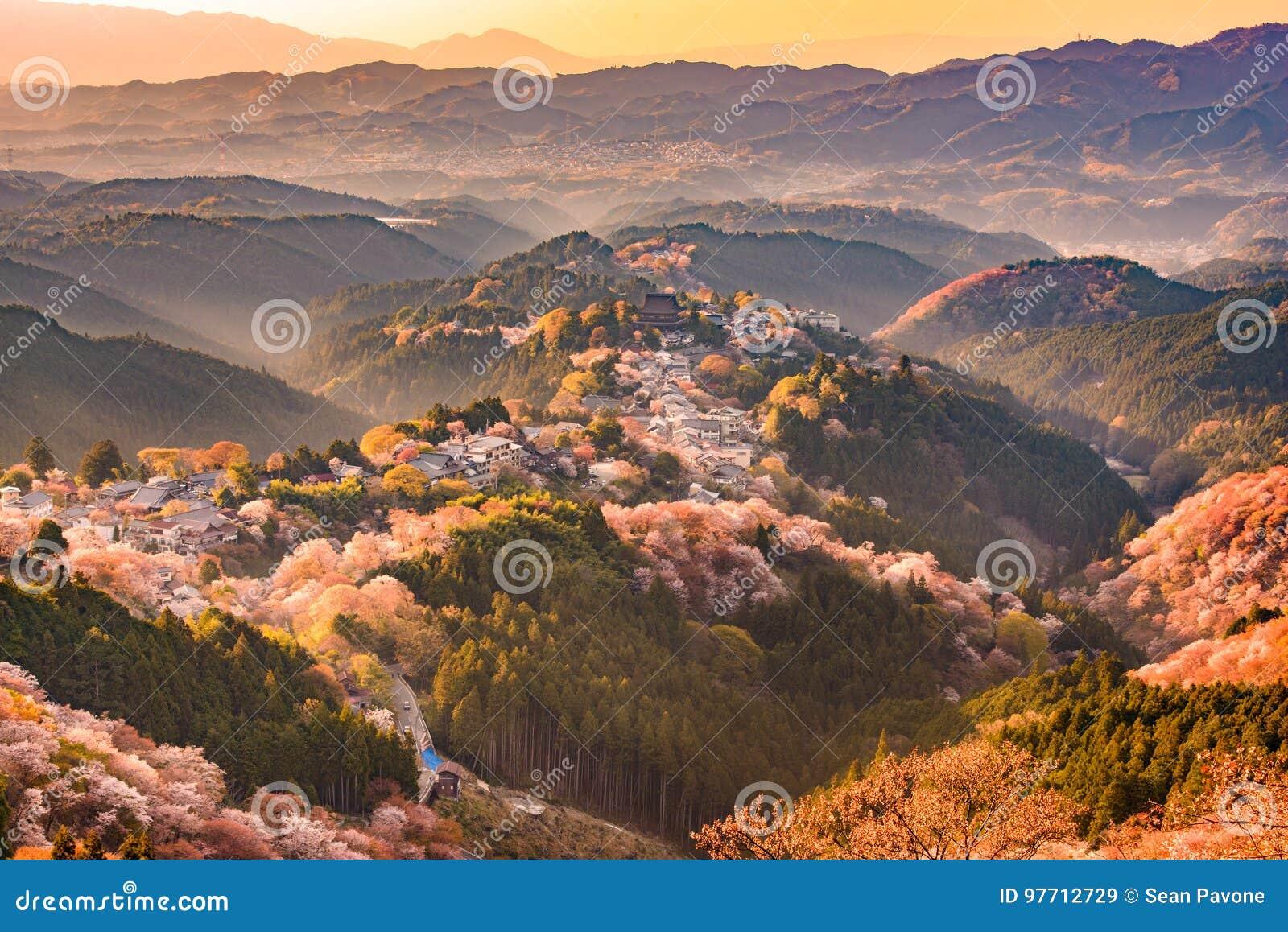 Download Yoshinoyama, Japan In Spring Stock Image - Image of city, hanami: 97712729