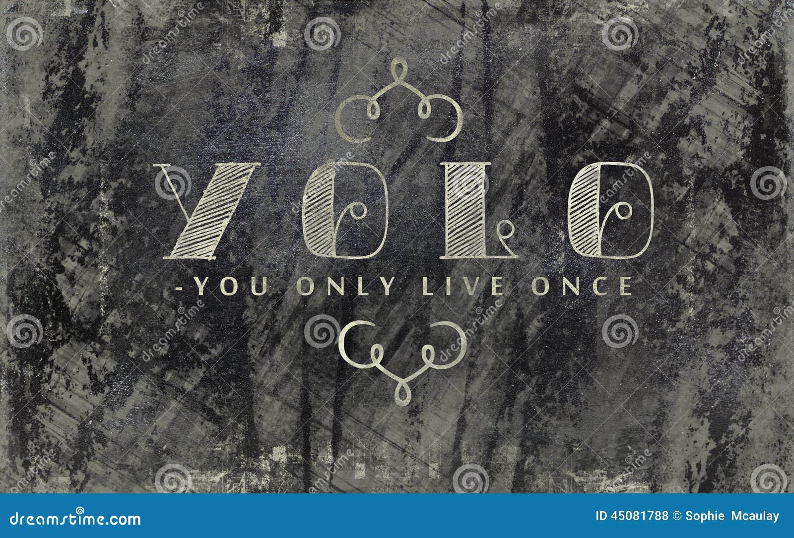 You Only Live Once Blackboard Sign Stock Illustration