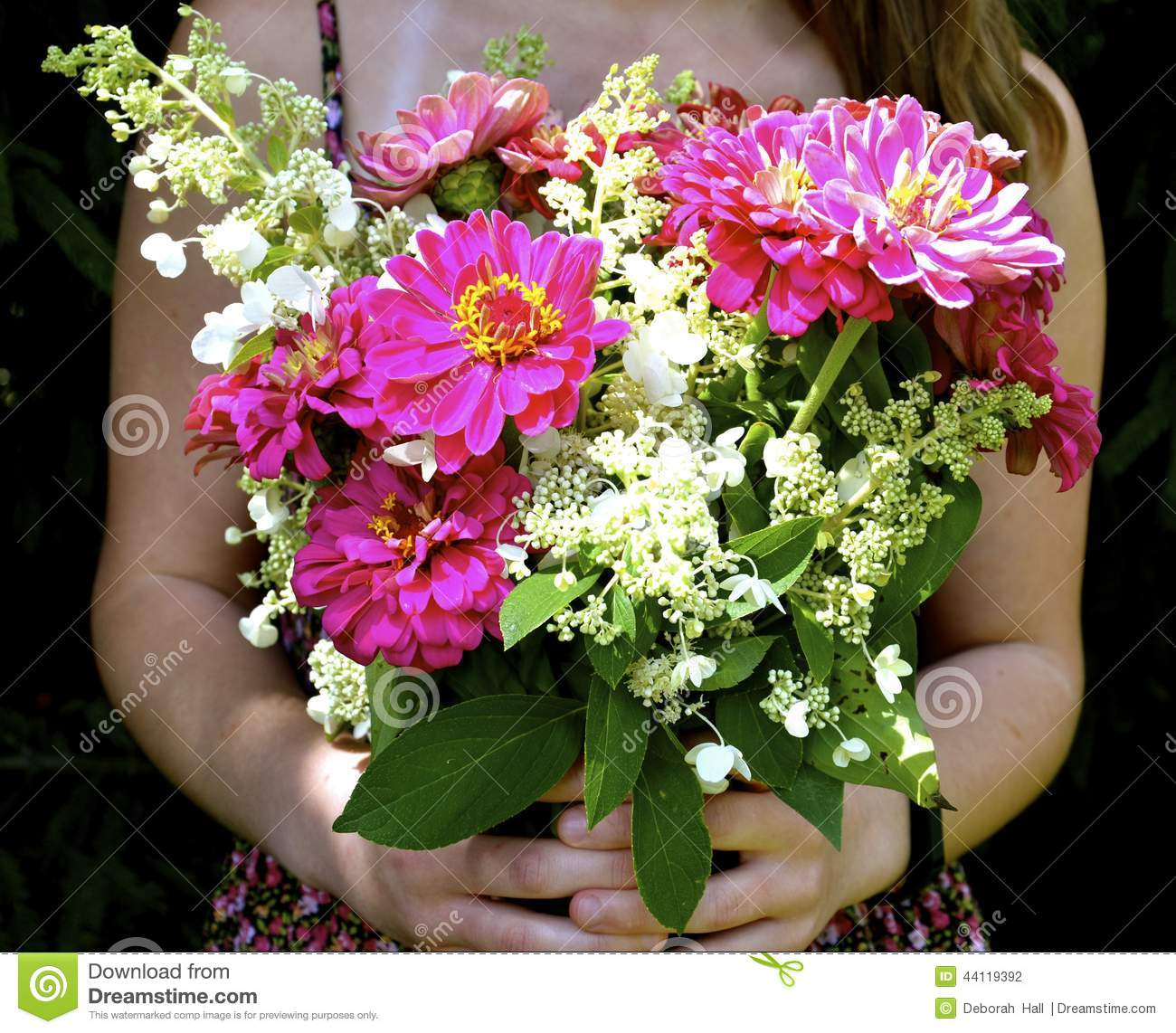 For You My Friend Stock Photo Image Of Zinninis Picked 44119392