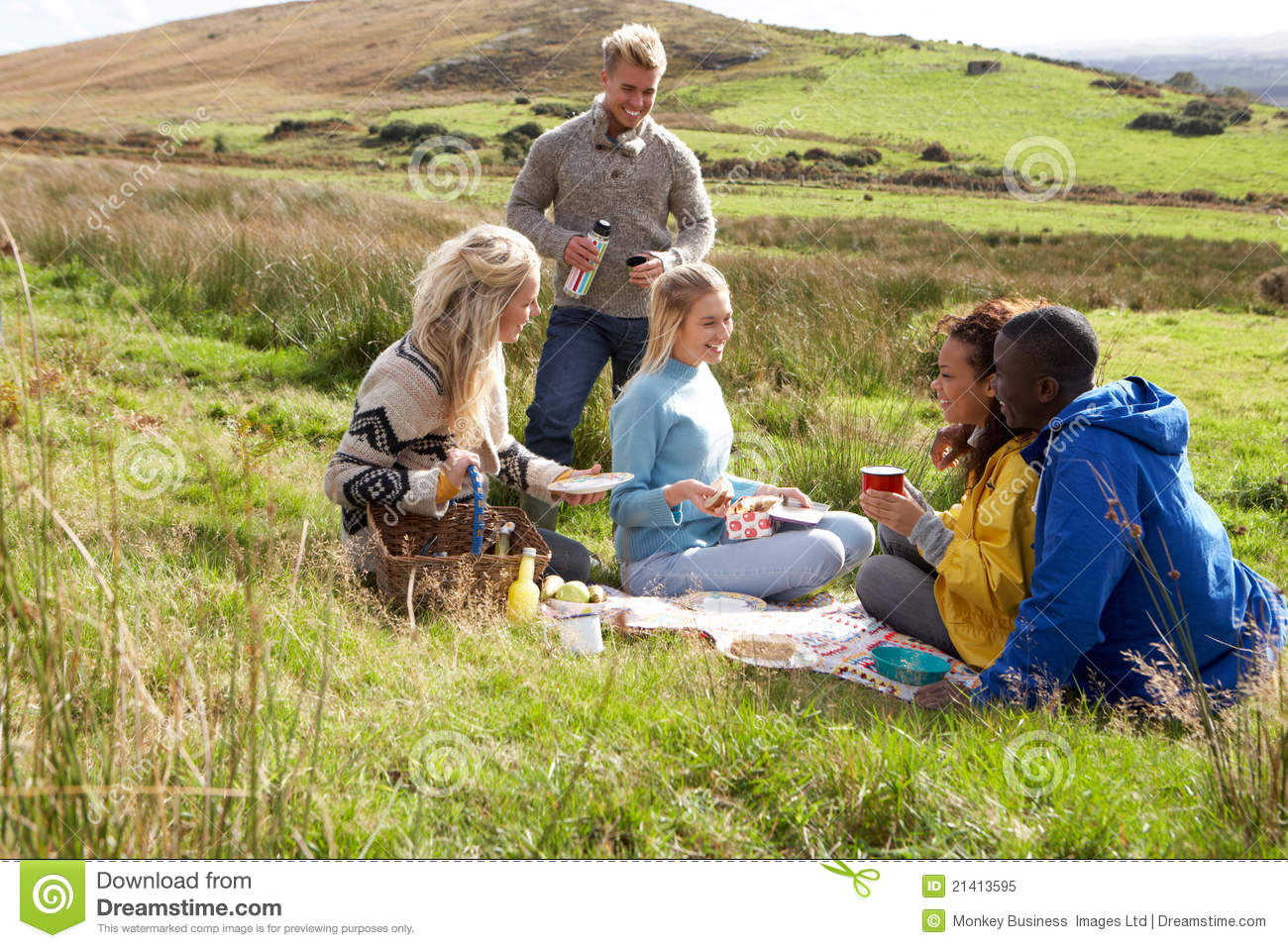 Young Adults On Country Picnic Royalty Free Stock Photo
